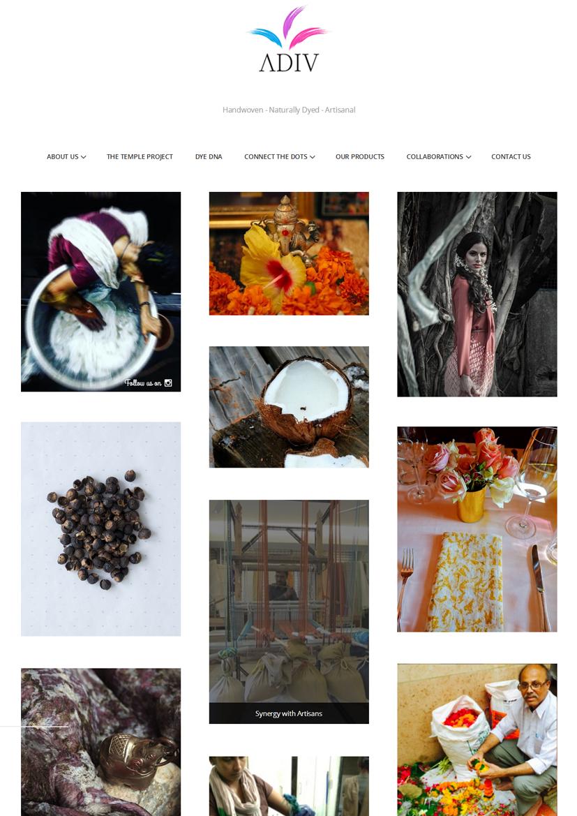 Adiv Purei - Website